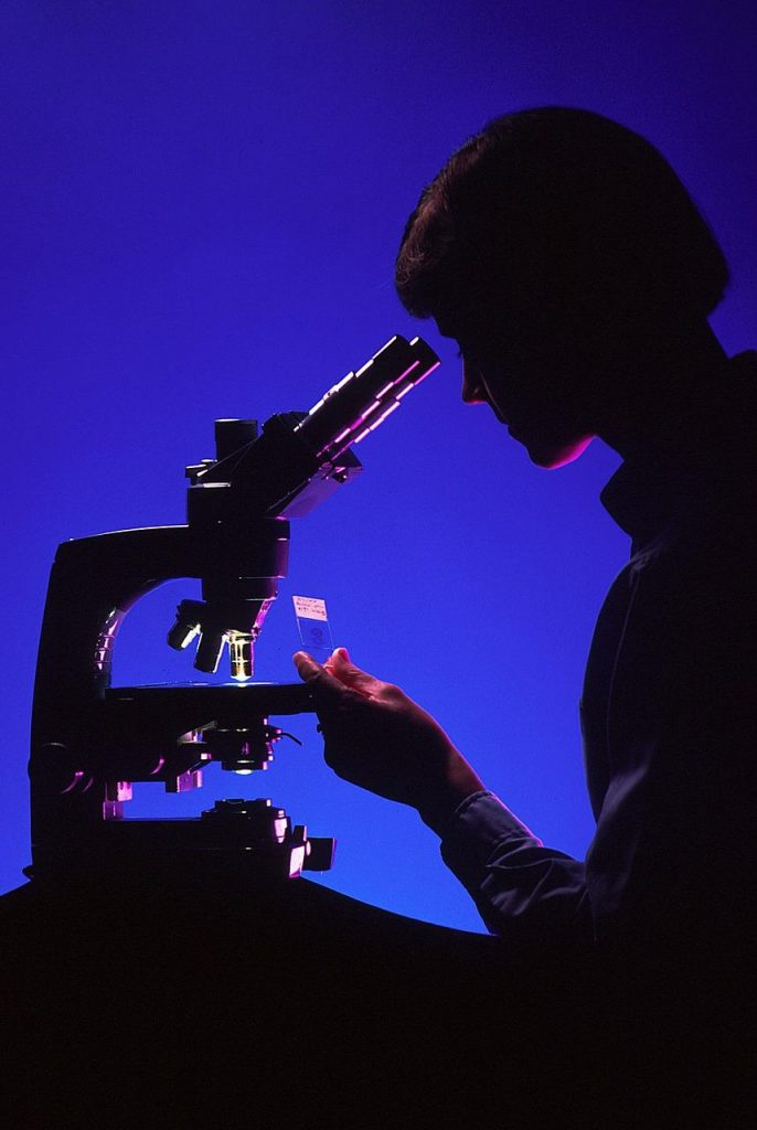 Little Known Aspects You Should Consider When Purchasing a Microscope