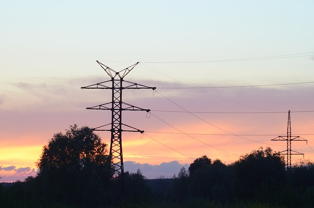 Transmission Line and Tree interference
