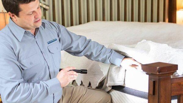 Hiring Bed Bug Exterminator