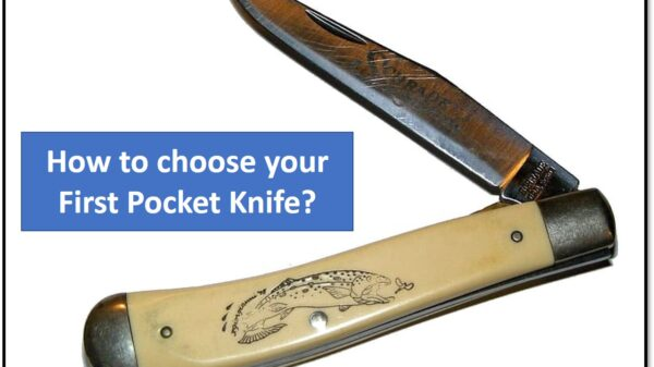 How To Choose Your First Pocket Knife