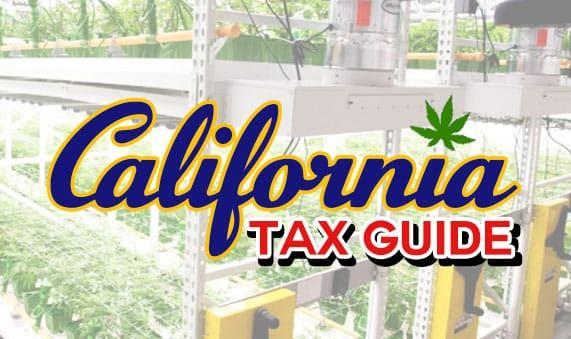 California cannabis business tax guide