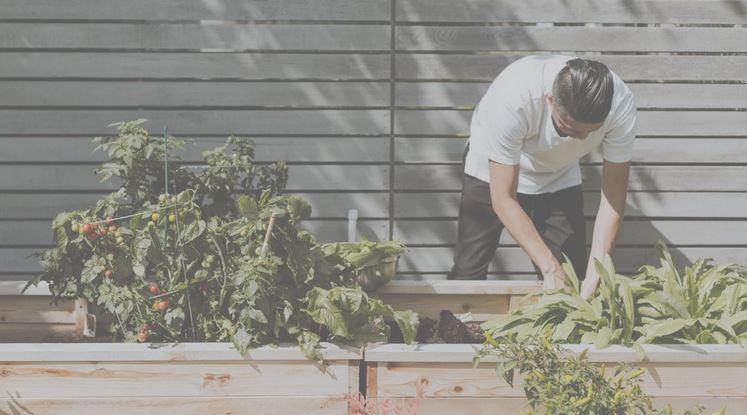 How Do You Landscape A Small Backyard