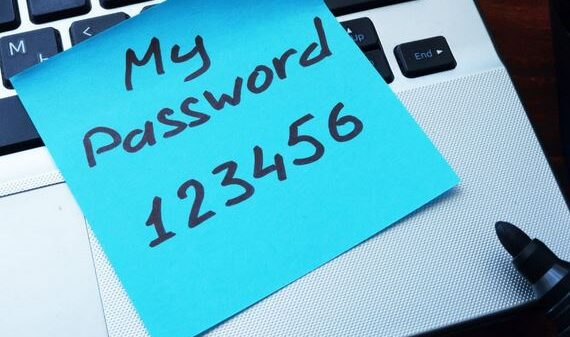 What is a Team Password Manager