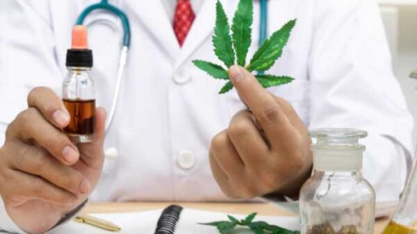 consuming cannabis in human beings