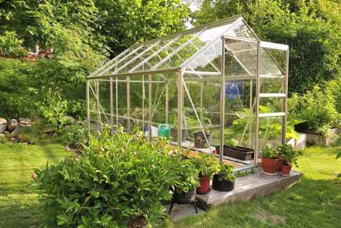How To Transform Your Backyard Into A Greenhouse