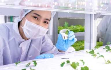 How to Become a Professional Biotechnologist in Four Steps
