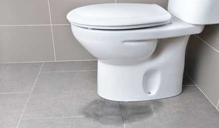What to Do About a Leaking Toilet