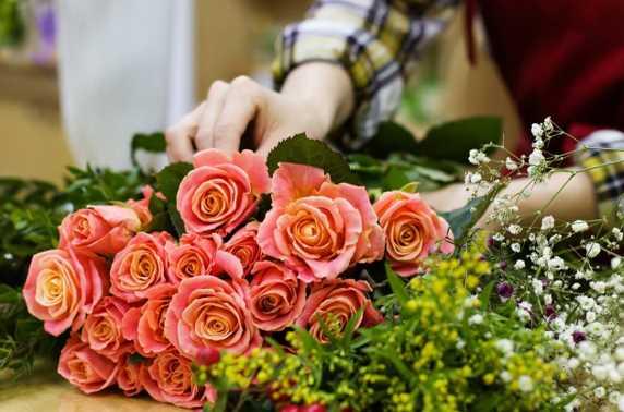 Reasons Why Everyone Loves Flowers