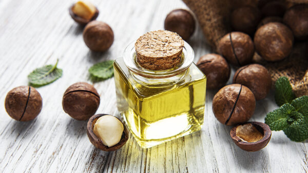 Natural Macadamia Oil And Macadamia Nuts On Wooden Board