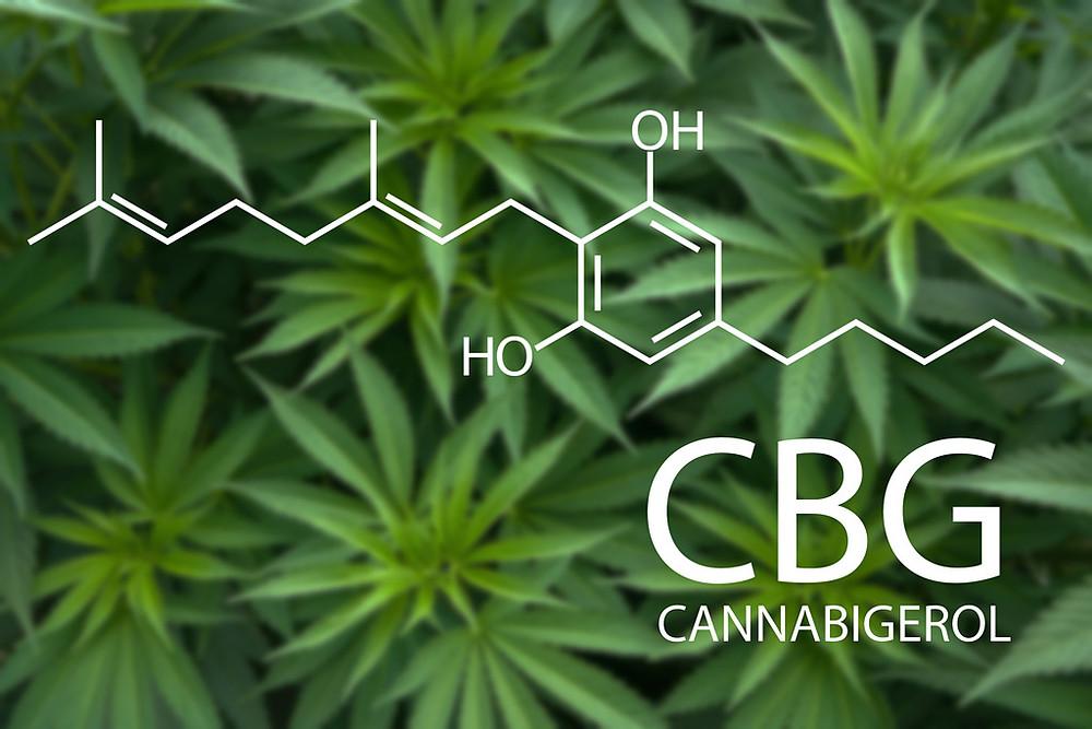 What is CBG, and How Does it Help You?