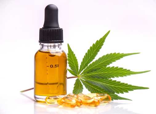 When Is the Best Time to Take CBD Oil