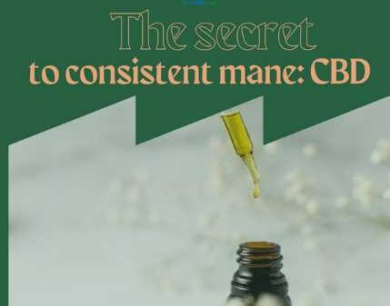 The secret to consistent mane